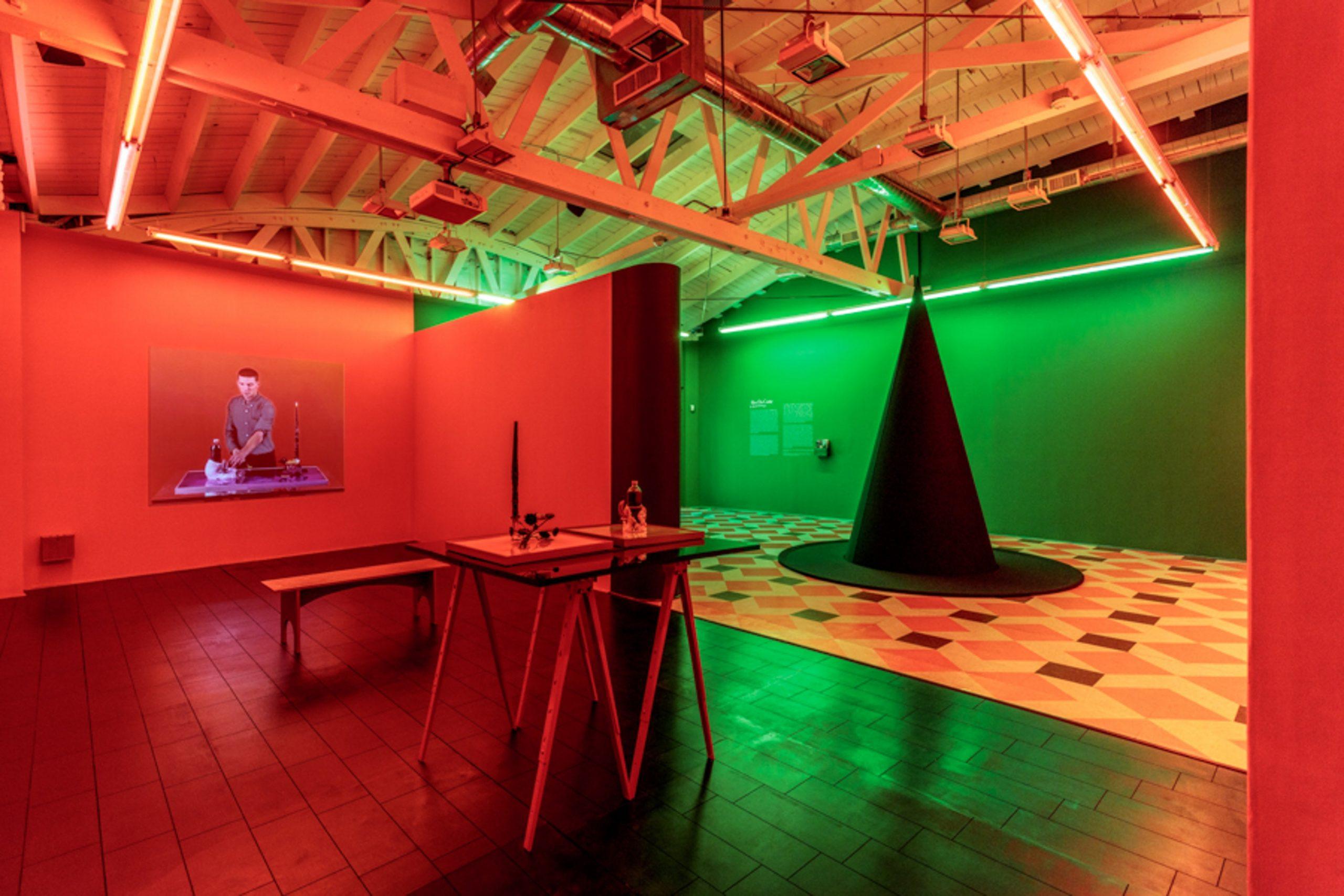 Alex Da Corte: A Season in He'll, installation view. Art + Practice, Los Angeles. July 9 - September 17, 2016. Photo by Joshua White.